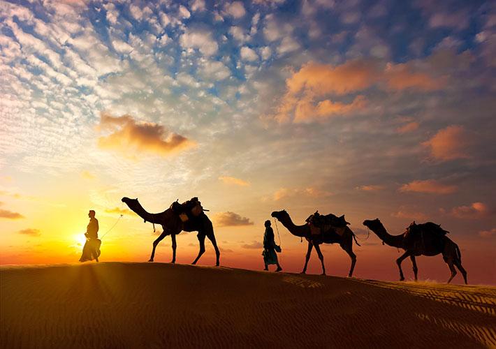タール砂漠