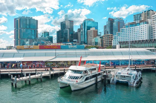 シドニーの巨大水族館へ行こう!...