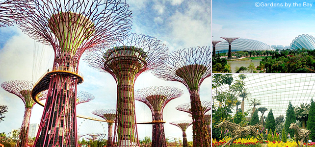 ©Gardens by the Bay